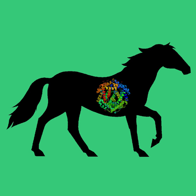Albumin, Horse Plasma