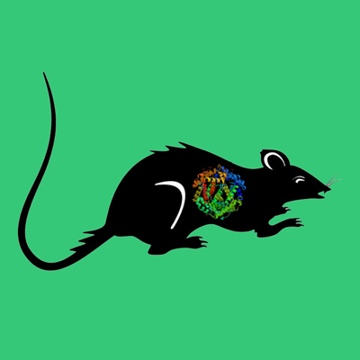 Active rat tPA, recombinant