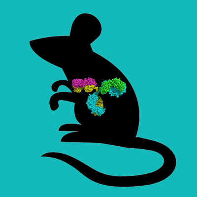 C57BL6 Mouse IgG, Protein A Purified